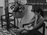 abortos forçados e danos psicologicos pos-aborto