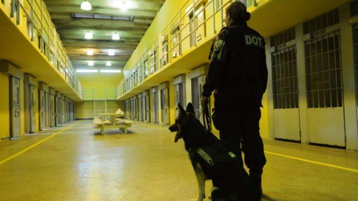 """Articulações para o desencarceramento, audiências de custódia e """"direitos dos manos"""""""