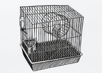 Gravura: Eu Hamster (Maurício Castro)